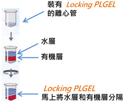 Locking PLGEL