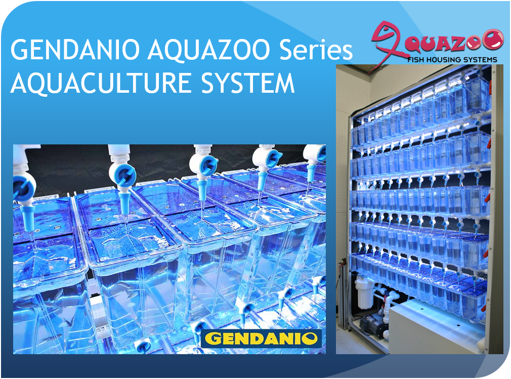GENDANIO AQUAZOO Series